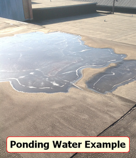 ponding water example